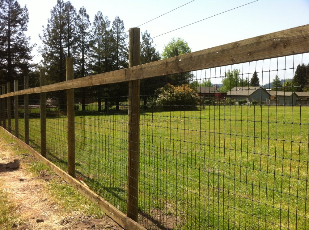 Deer Fence How To Create Vegetable Garden Fence Ideas